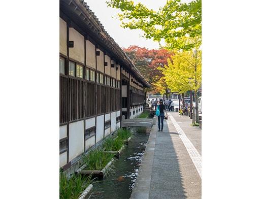 Tsuwano town, Shimane Prefecture