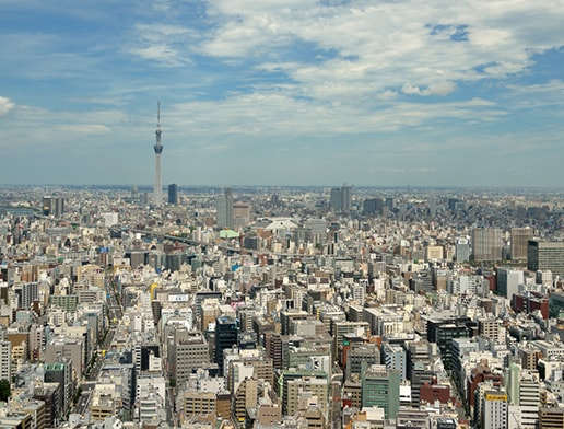View of the big city, Tokyo