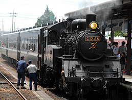 Steam Locomotive Train, SL Moka