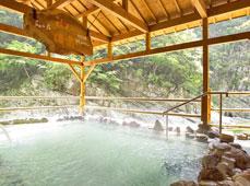 Nano Yado Hotel Iya Onsen