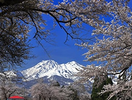overlook Mt Myoko from the Sakura picture frame