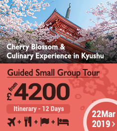 Guided Small Group Tour