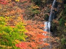 dakikaerikeikoku_2007-11-03_kawana-hiroyoshi-0005