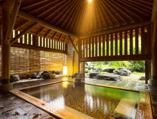 hoshino-kai-nikko02