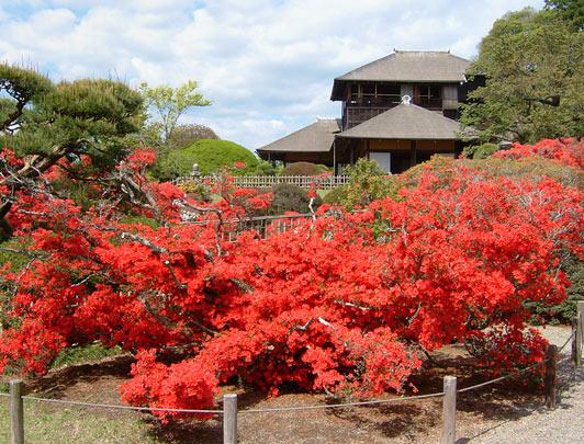 Kairakuen, Ibaraki