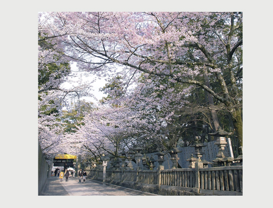 Kotohiragu, Kagawa