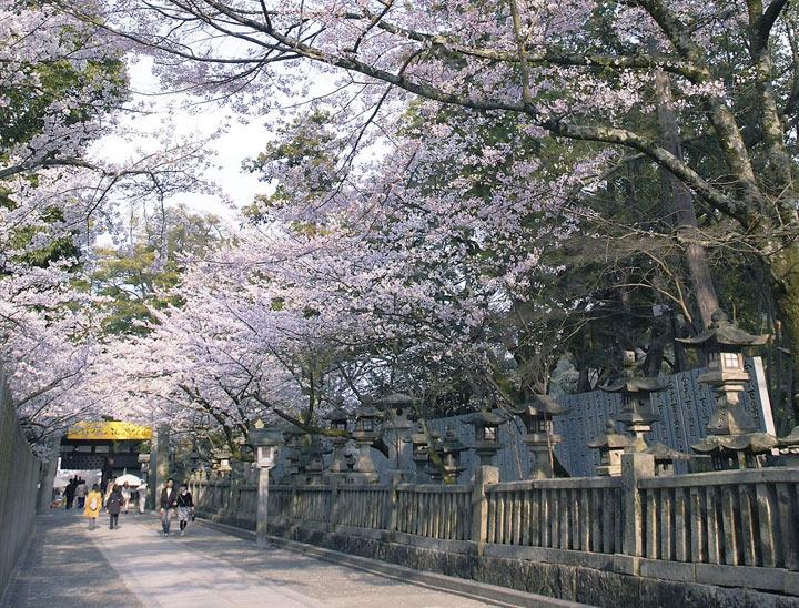 Kotohiragu Shrine