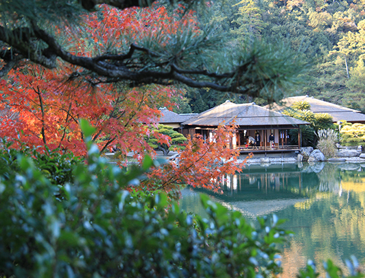 Secrets of Japan: Shikoku Adventure