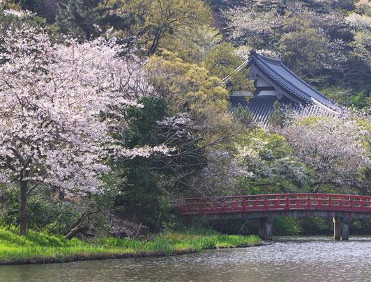 Sankei-en Garden, Kanagawa