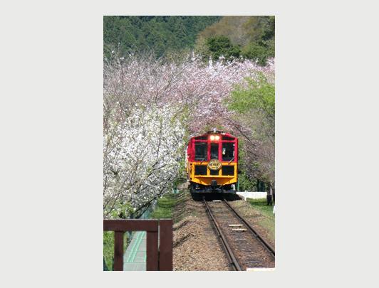 Sagano Sightseeing Train