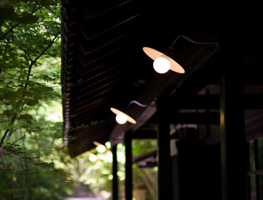nihon-no-ashitaba01