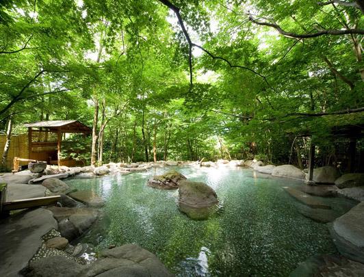 nihon-no-ashitaba03