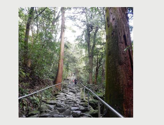 Minemichi Long Trail, Kunisaki Peninsula, Oita