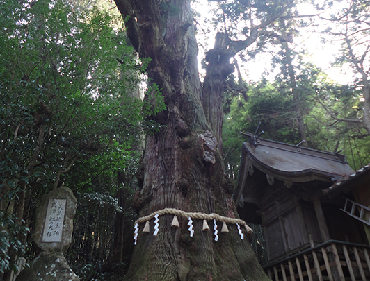 Ogo sha Shrine