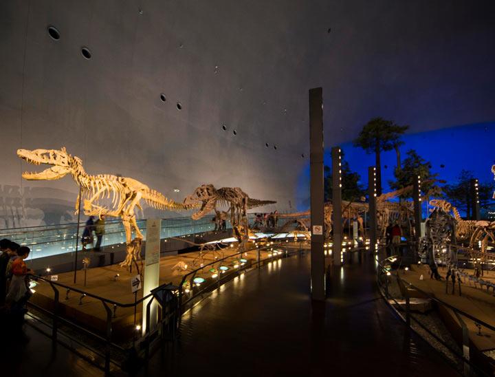 Le Musée des dinosaures