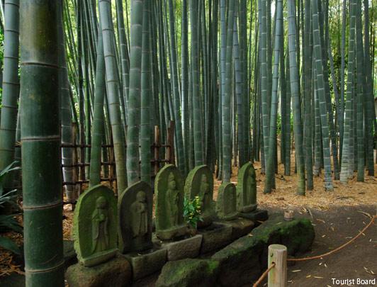 Le temple Hokokuji