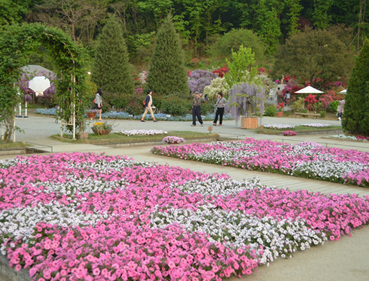 Le Parc Floral d' Ashikaga