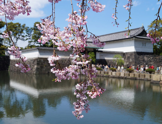 The East Gardens of Imperial Palace, Tokyo
