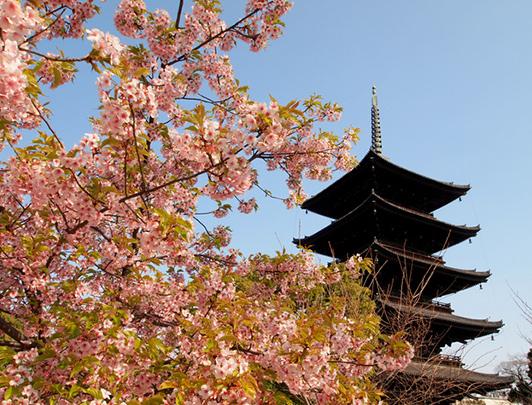 kyoto-to-ji