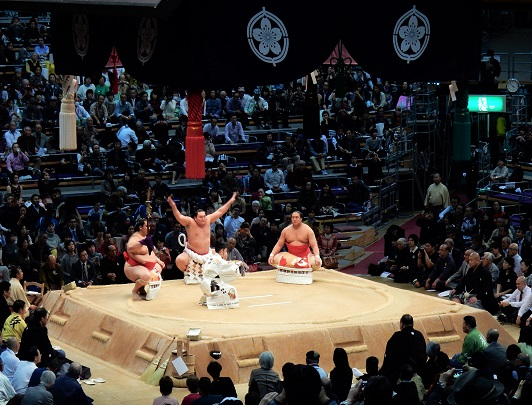 Sumo Tour - Nagoya Tournament