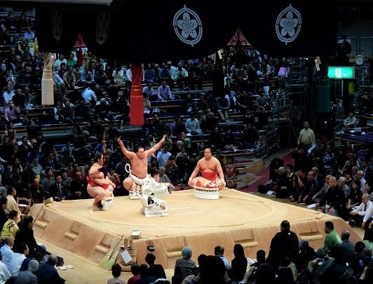 Tour di Sumo - Il Torneo di Nagoya