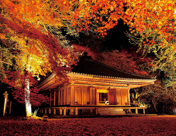Autumn Lighting Up Events at Rokugo Manzan: 12 Nov - 3 Dec 2016