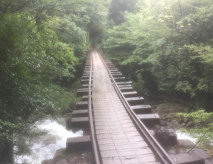 yakushima_2-min