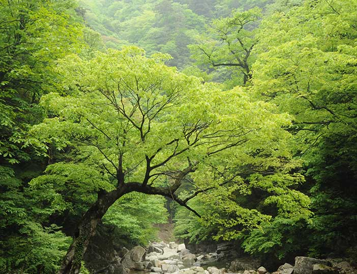 Sandankyo – site naturel exceptionnel