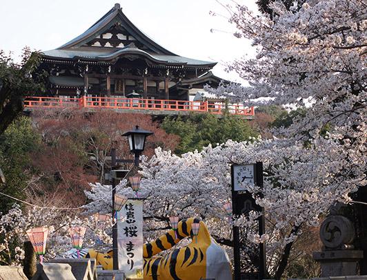 Mt-Shigi-Hondo-début-avril