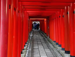 Anamori Inari Shrine, Tokyo