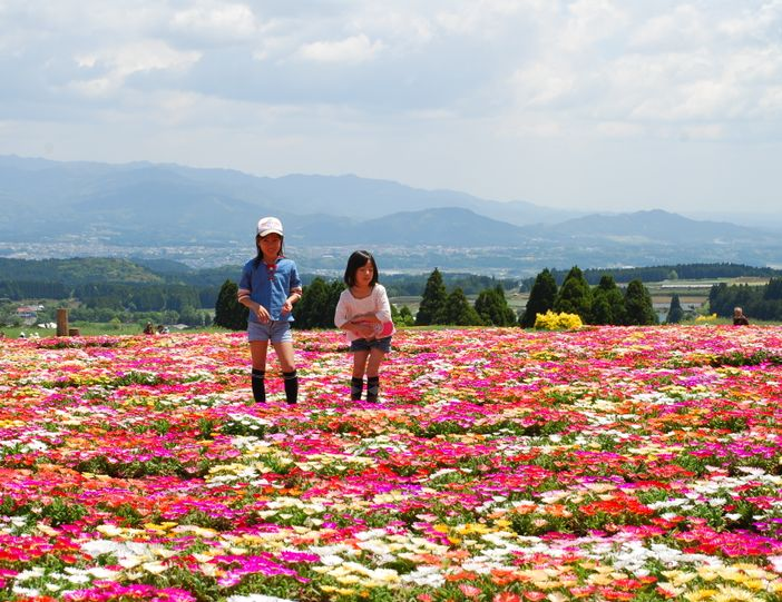 Vacances à Kobayashi : où aller avec ses enfants