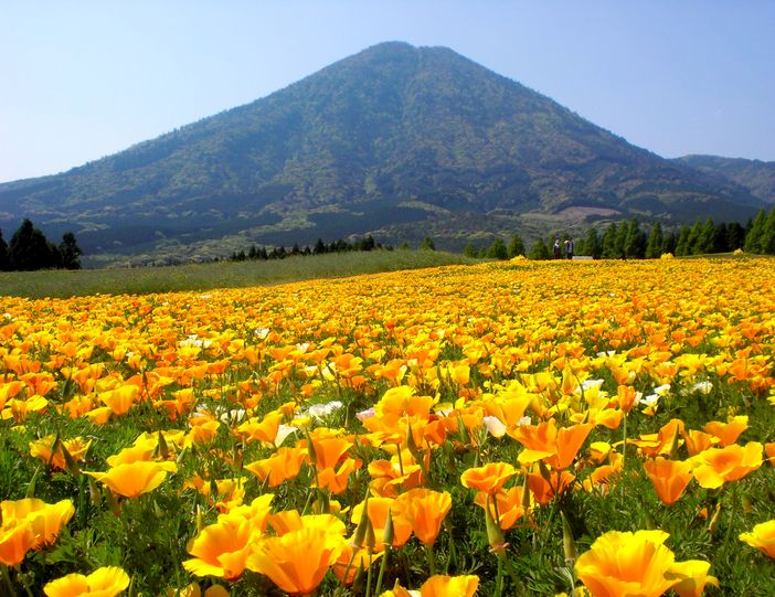 kobayashi kyushu japon parc ikoma plateau