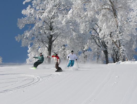 Nozawa Ski Resort