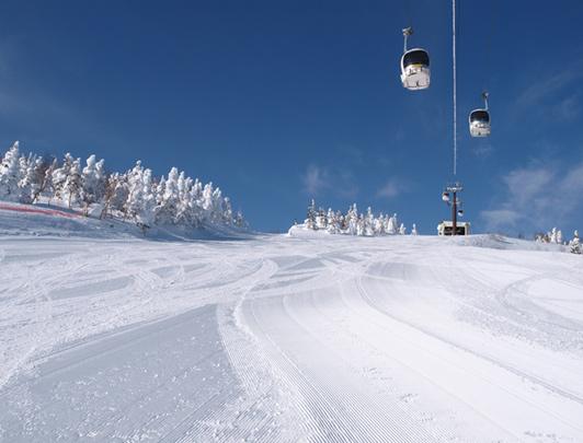 Shiga Kogen Ski Tour from Nagano