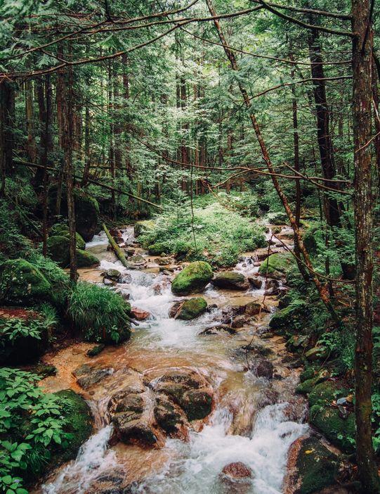 paysage randonnee magome tsumago