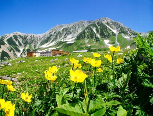 Les Alpes Japonaises à Toyama : de l'Alpine Route à Gokayama