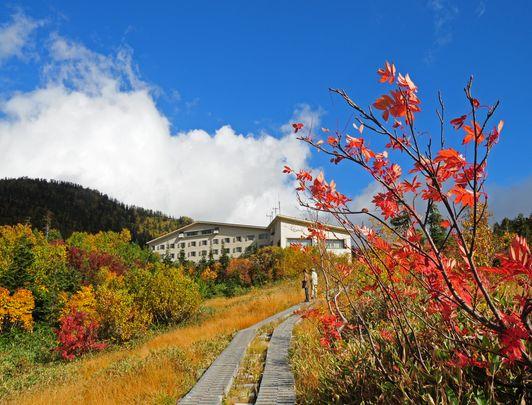 Alpine route en automne, Toyama