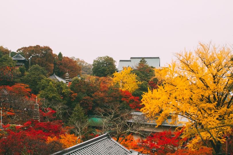 alice duporge japon-0034IMG_0034-min