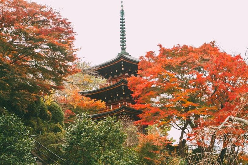 alice duporge japon-0091IMG_0091-min