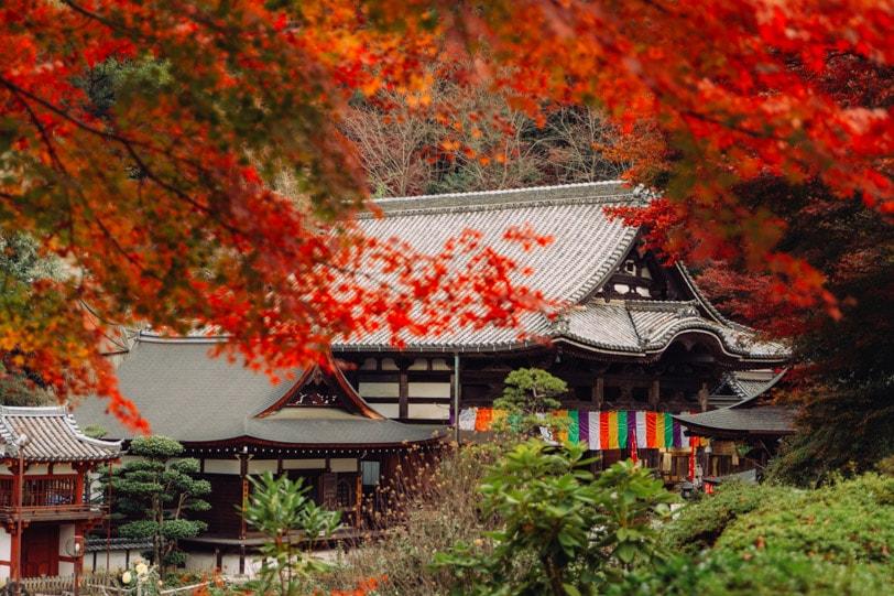 alice duporge japon-0105IMG_0105-min