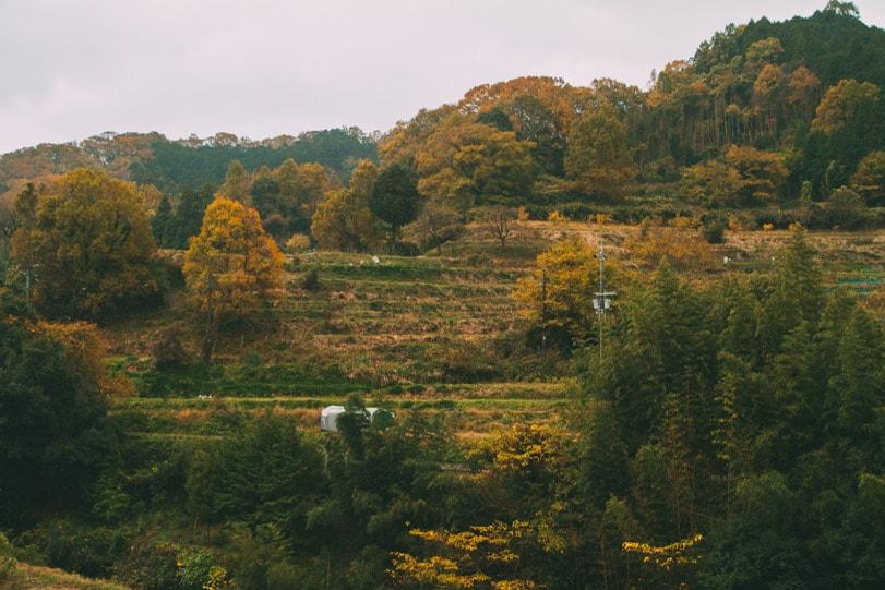 alice duporge japon-0109IMG_0109-min