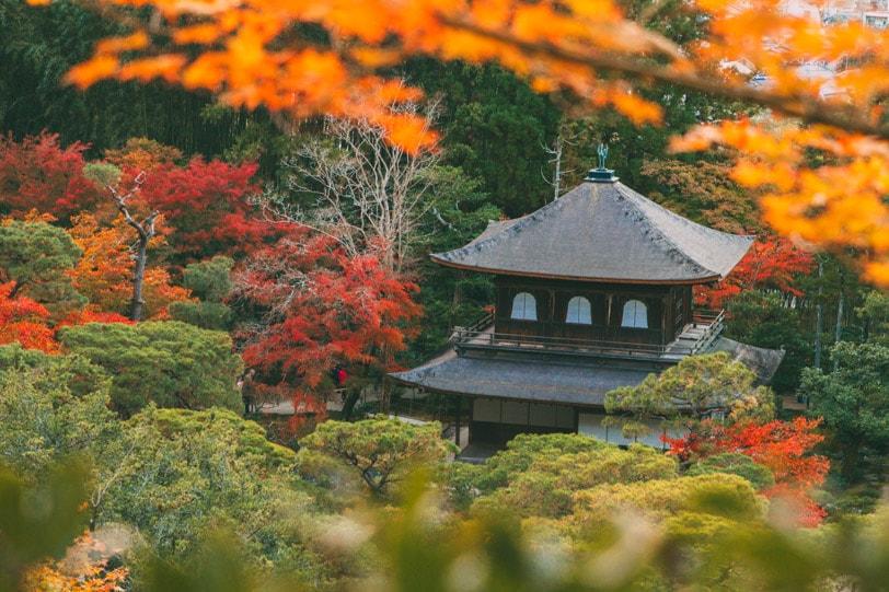 alice duporge japon-0252IMG_0252-min