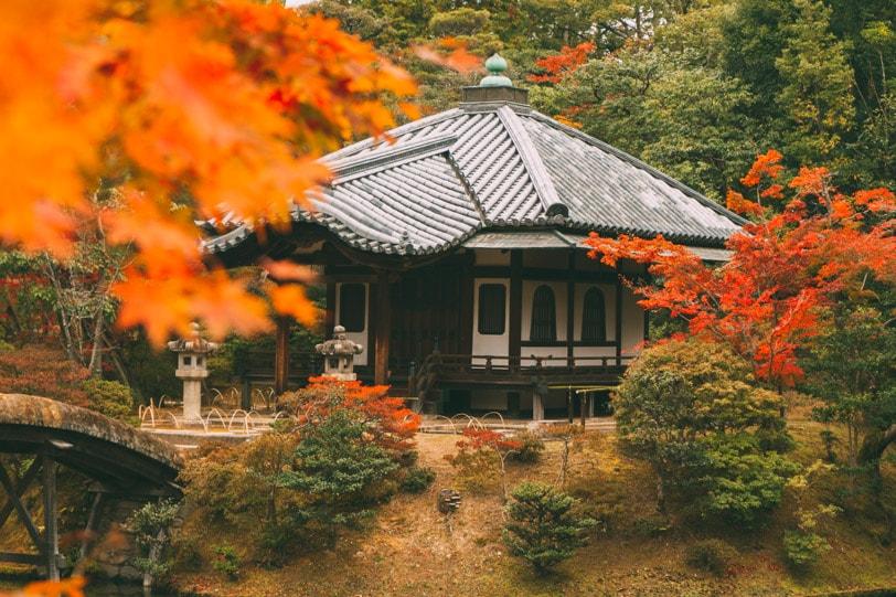 alice duporge japon-0318IMG_0318-min