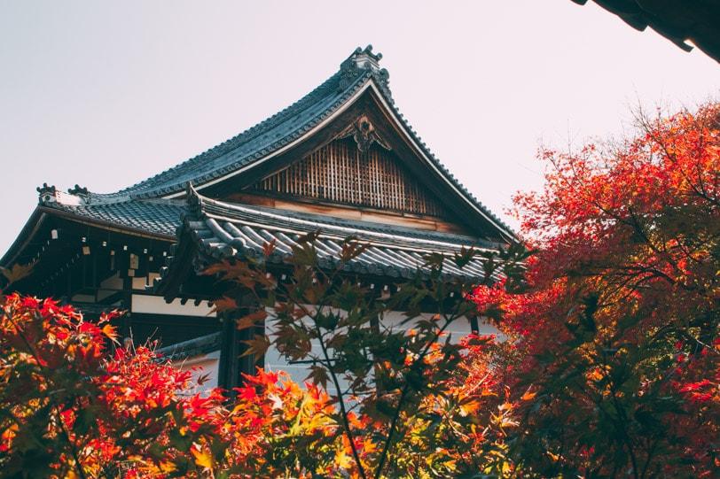 alice duporge japon-0674IMG_0674-min