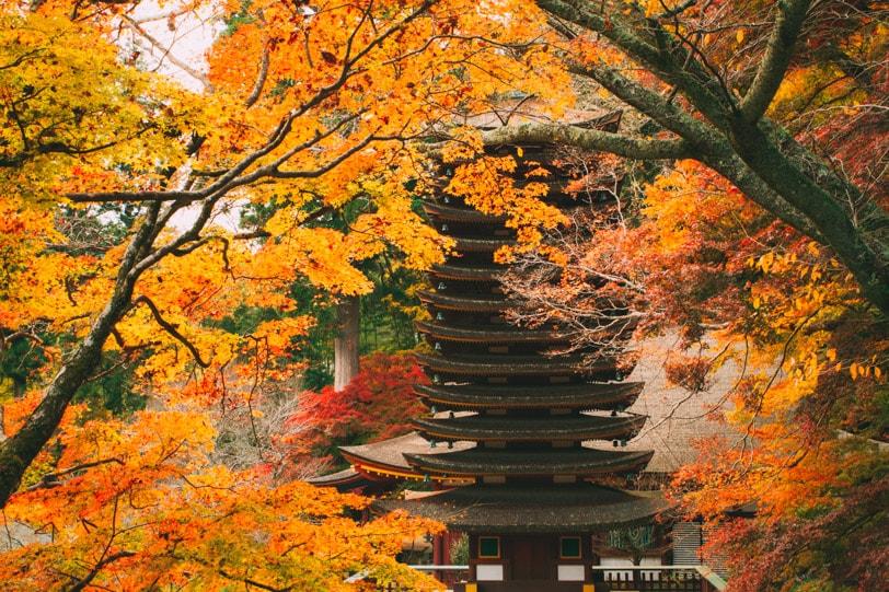 alice duporge japon-9823IMG_9823-min