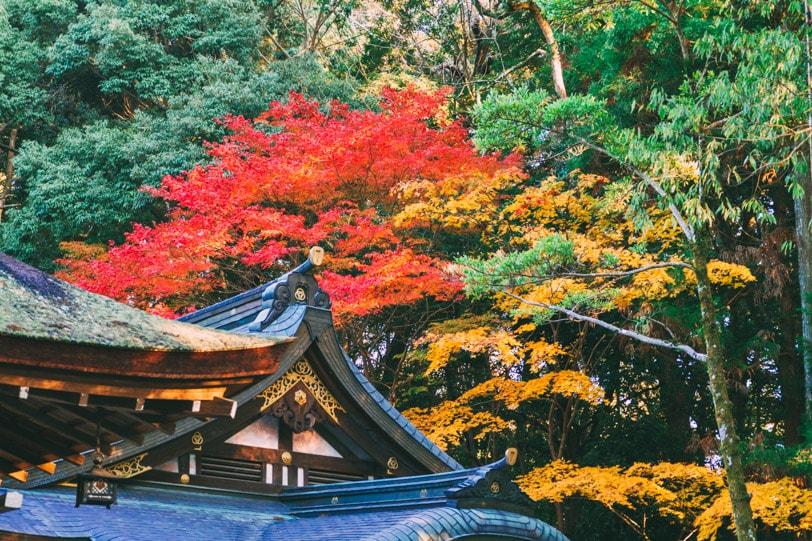 alice duporge japon-9869IMG_9869-min