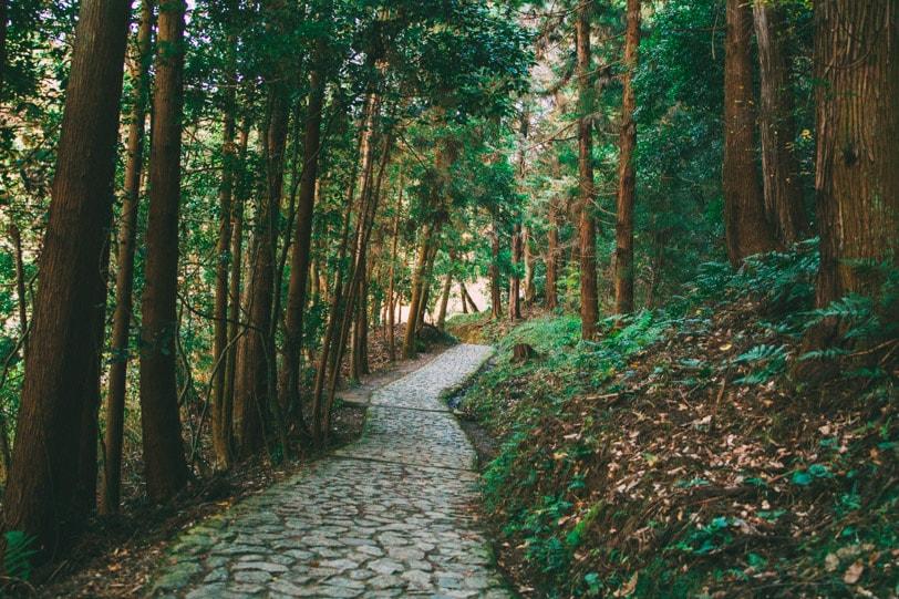 alice duporge japon-9876IMG_9876-min