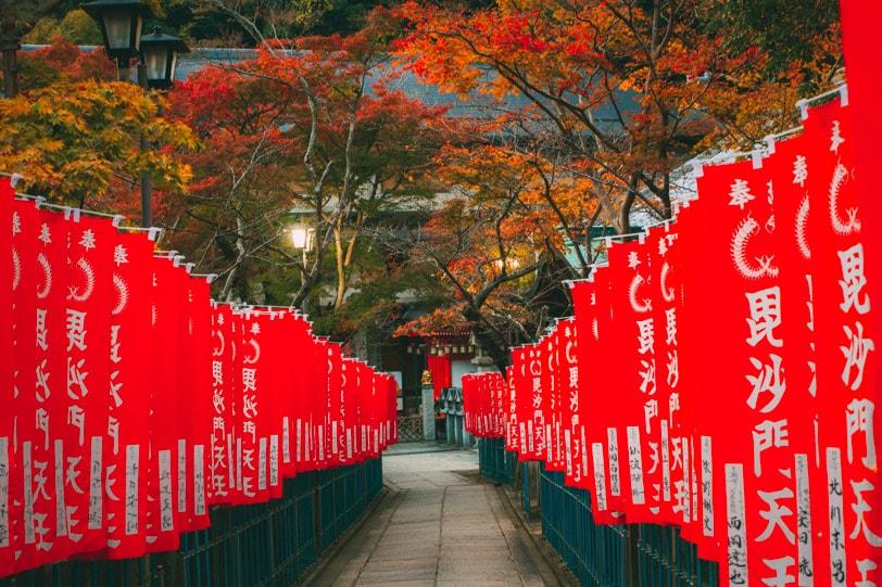 alice duporge japon-9982IMG_9982-min