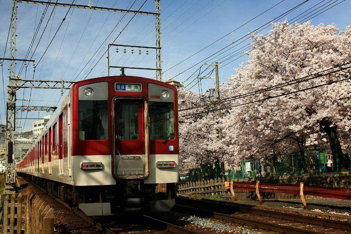 Voyager à Mie avec Kintetsu Railway en toute sérénité