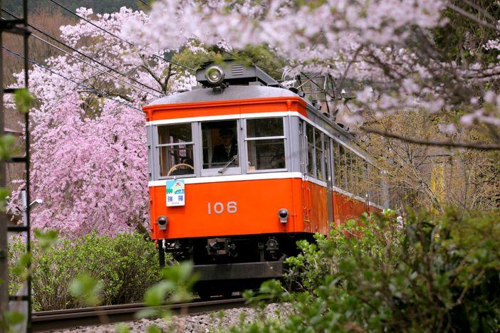 Hakone : Promenade dans le temps au pied du Mont Fuji
